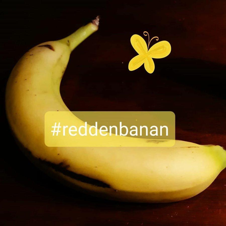 Redd en banan